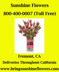 Sunshine Flowers - Gay friendly florist in Fremont, CA